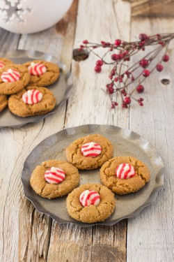Molasses Candy Cane Blossoms