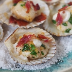 Scallops with Scottish Cream Cheese and Bacon Recipe
