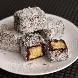 Snow White Lamingtons