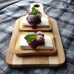 Sparkling Cranberry and Brie Tartines Recipe