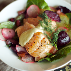 Steelhead and Roasted Beet Salad