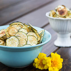 Zucchini and Yellow Squash Chips