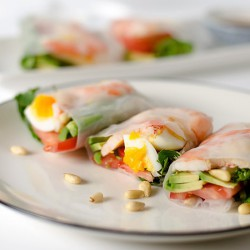 Avocado Shrimp Spring Roll
