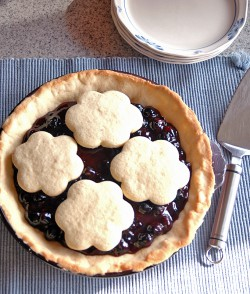 Blueberry Pie w/ Sugar Cookie Crust
