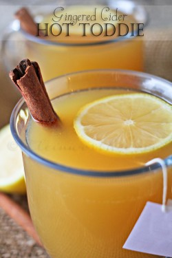 Gingered Cider Hot Toddy Recipe
