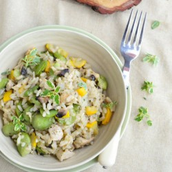 Risotto with broad bean
