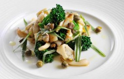 Warm Salad of Braised Cuttlefish