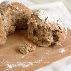 Whole Wheat No Knead Bread Recipe