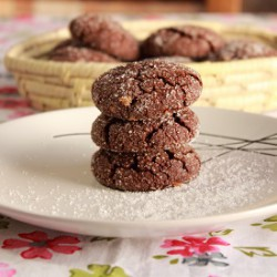 Chocolate and Peanut Butter Cookies