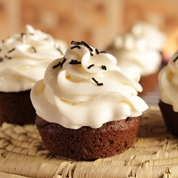Dark Chocolate Cupcakes Cream Cheese Frosting Recipe