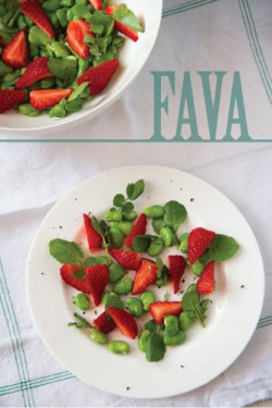 Fava, Strawberry, Watercress Salad