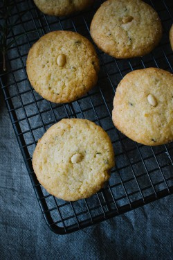 Pine Nut Rosemary Cookies Recipe