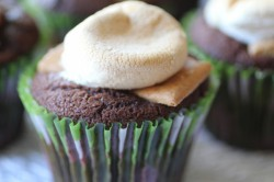 Skip The Frosting Cupcakes- Smores Style