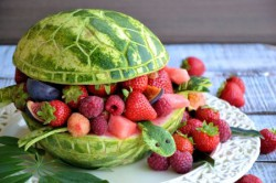 watermelon turtle.