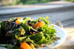 Winter Salad with California Honey