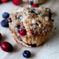 Blueberry and Cranberry Crumb Muffin
