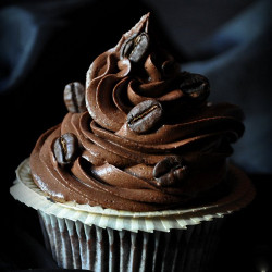 Double Espresso Chocolate Cupcakes