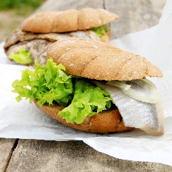 German Fish Sandwich