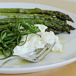 Roasted asparagus with burrata, Tahitian lime oil and sorrel chiffonade
