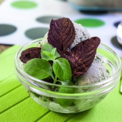 Fresh Mint Stracciatella Ice Cream