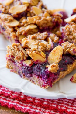 Mixed Berry Streusel Bars