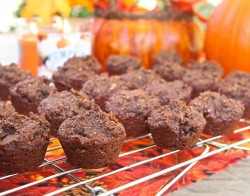 Paleo Chocolate Pumpkin Cookies