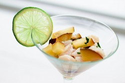Scallop and Plum Ceviche