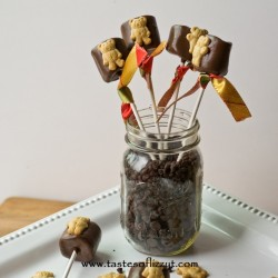 Teddy Graham Smore Pops Recipe