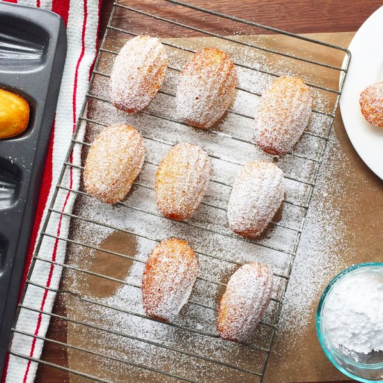 The Best French Madeleines