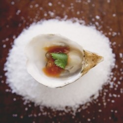 Bloody Mary Oysters on the Half Shell Recipe