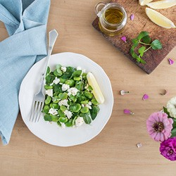 Broad Bean Mint Feta Salad Recipe