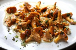 Chanterelles and Herb Butter Recipe