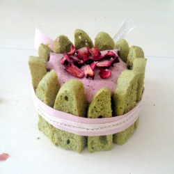 Cherry Matcha and Mint Charlotte
