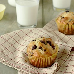 Cranberry-Chocolate Chip Muffins