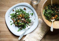 Lentil Salad with Apricots Pecans and Blue Cheese Recipe