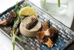 Morel Flan with Fresh Morels