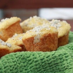 Orange Sour Cream Muffins