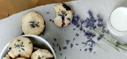 Blueberry Shortbread – Gluten Free