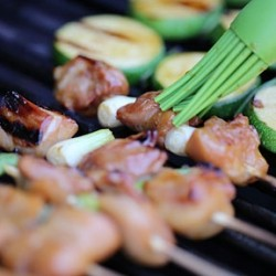 Grilled Chicken and Zucchini Yakitori Recipe