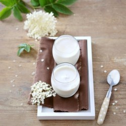 Homemade Yogurts with Elderflower