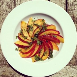 Nectarine Mint and Pepper Salad Recipe