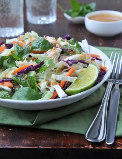 Thai Chicken Cabbage Salad Recipe