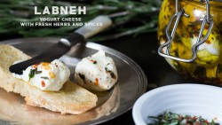 Labneh (Yogurt Cheese)