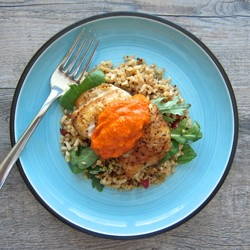 Pan Roasted Black Cod with Romesco Sauce Recipe
