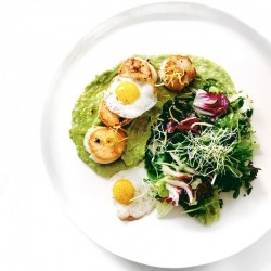 Pan-Seared Scallops with Avocado Puree