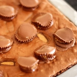 Superfudge Brownies with Reeses Peanut Butter Cups