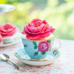Teacup Cake and Sugar Roses