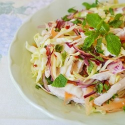 Vietnamese Chicken Mint Salad Nigella Recipe