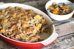 Baked Penne w/ Squash and Sausage