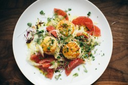 Scallops with Fennel and Grapefruit